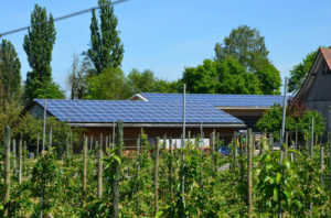dertal fotovoltaico gallura